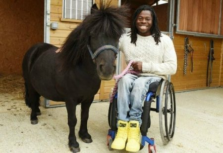 Picture of a person in a wheelchair next to a horse.
